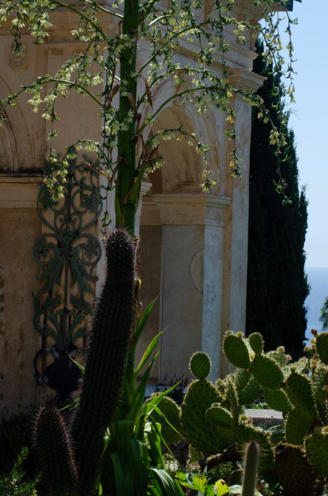 Frau Piepenkötter I Ligurien I Botanischer Garten Hanbury