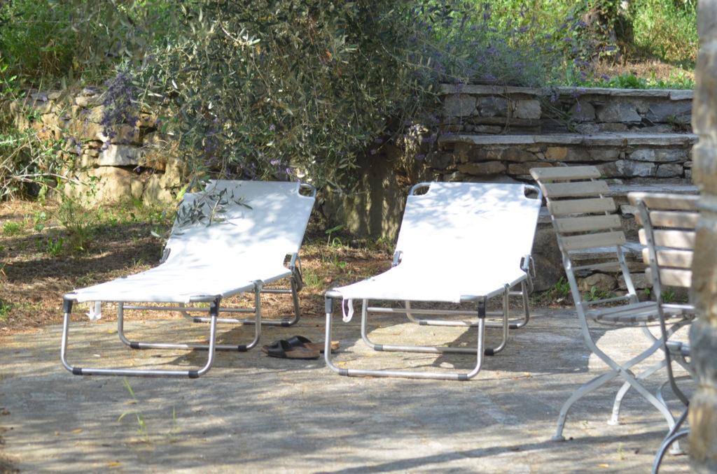 Frau Piepenkoetter I Urlaub und Italien I Terrasse im Olivenhain
